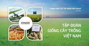 Công ty cổ phần tập đoàn giống cây trồng Việt Nam